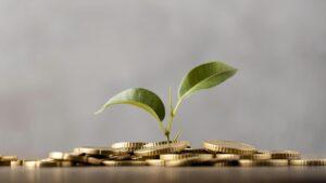 Legge di Bilancio: confermato il bonus investimenti al sud.
